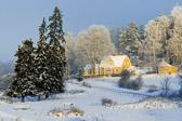 Snowscape, Nantuna, Uppsala